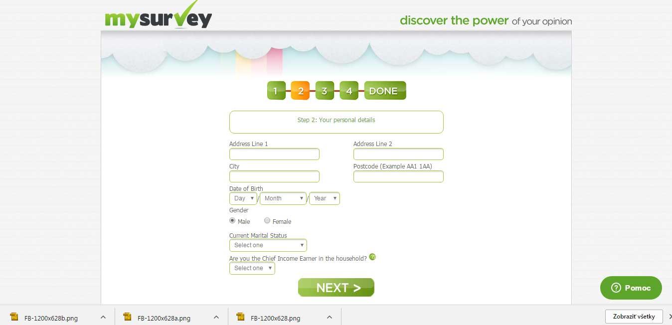 mysurvey_review.1jpg